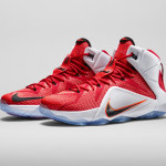 LeBron 12 HRT of a Lion