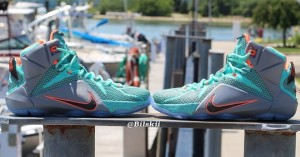 LeBron 12 Dolphins