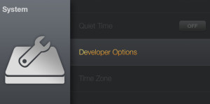 Select System, then Developer Options